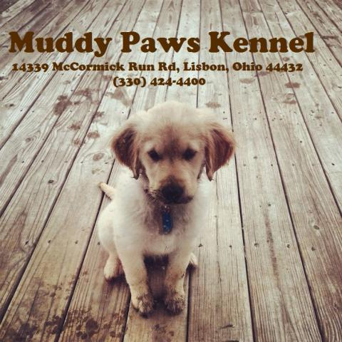 muddy_paws_kennel_front_webpage.jpg